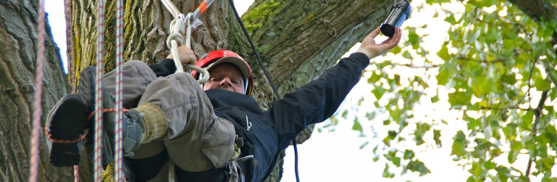 Reddingswerker in bomen - AAB Training & Opleiding